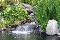 bigstockphoto_Waterfall_In_Japanese_Garden_563780