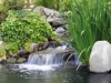 bigstockphoto_Waterfall_In_Japanese_Garden_563780
